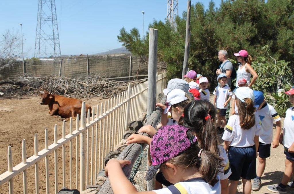 Visita: El Carretón (Infantil)